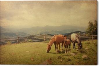 Aluminiumsbilde To hester og føll i eng. papir tekstur.