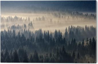 Alüminyum Baskı (Dibond) Sisli dağlarda iğne yapraklı orman