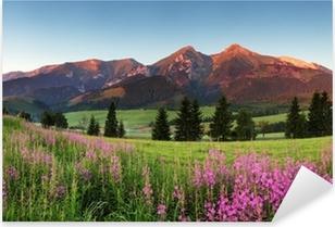 Pixerstick Aufkleber Beauty Bergpanorama mit Blumen - Slowakeip