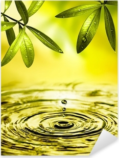 Pixerstick Aufkleber Blätter Hängen über Wasser
