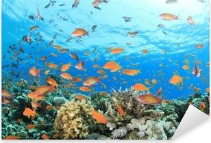 Pixerstick Aufkleber Coral Reef Unterwasser
