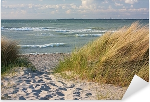 Pixerstick Aufkleber Dünenlandschaft am Strand der Ostsee bei Heiligenhafen