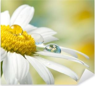Pixerstick Aufkleber Gänseblümchen mit Tropfen mit Spiegeleffektp