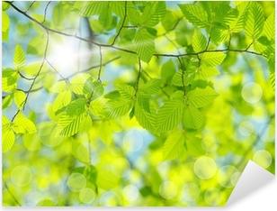 Pixerstick Aufkleber Green leaves