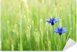 Pixerstick Aufkleber Kornblumen in einem Feld