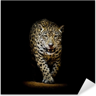 Pixerstick Aufkleber Leopard Portraitp