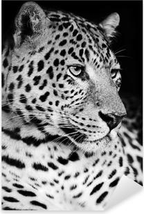 Pixerstick Aufkleber Leopard