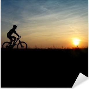 Pixerstick Aufkleber Mountainbiker