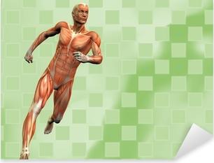 Pixerstick Aufkleber Muskelmann Hintergrund