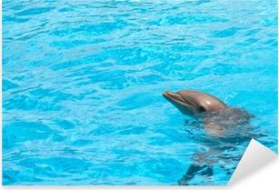 Delfine im Sonnenuntergang Türaufkleber 200x90cm Türtapete Türsticker