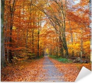 Pixerstick Aufkleber Pathway in den herbstlichen Wald