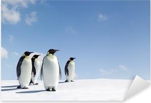 Pixerstick Aufkleber Penguins
