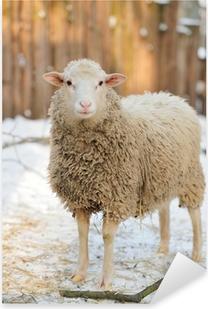 Pixerstick Aufkleber Schaf