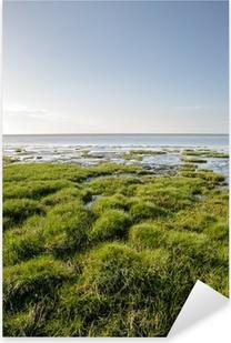 Pixerstick Aufkleber Seegras am Ufer der Nordsee - Duhnen, Deutschlandp