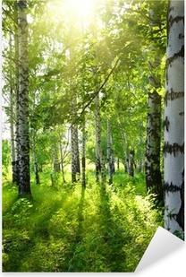 Pixerstick Aufkleber Sommer Birkenwälder mit Sonne
