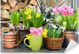 Pixerstick Aufkleber Tulpen, Schneeglöckchen und Narzissen Blüten