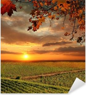 Pixerstick Aufkleber Vine Landschaft in Chianti, Italienp