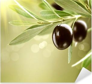 Pixerstick Aufkleber Wachsende Oliven. Schwarz Reife Olive auf einem Baum