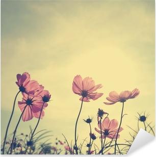 Pixerstick Aufkleber Weinlese-Blumen Cosmos in Sonnenuntergang