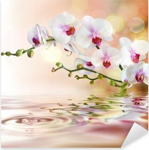 Pixerstick Aufkleber Weiße Orchideen auf dem Wasser mit Tropfenp
