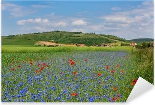 Pixerstick Aufkleber Wiese mit Kornblumen und Mohn in Auvergnep