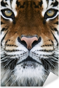 Autocolante Pixerstick a tiger