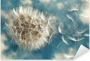 Autocolante Pixerstick Dandelion Loosing Seeds in the Wind