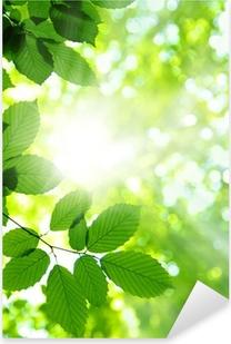 Autocolante Pixerstick Green leaves
