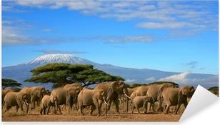 Autocolante Pixerstick Kilimanjaro With Elephant Herd