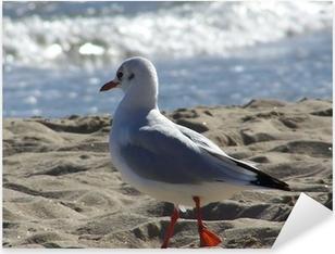 Autocolante Pixerstick oiseau de mer
