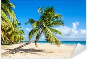 Autocolante Pixerstick Palm beach