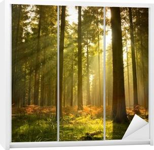 Autocolante para Roupeiro Beautiful Forest