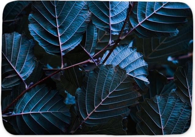 Badmat De kleurrijke bladeren - Bloemen en Planten