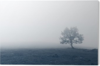 Bild auf Acrylglas Einsamer Baum mit Nebel