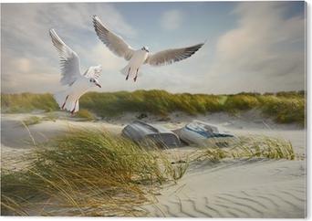 Bild auf Acrylglas Möwen, Dünen und Fischerboote
