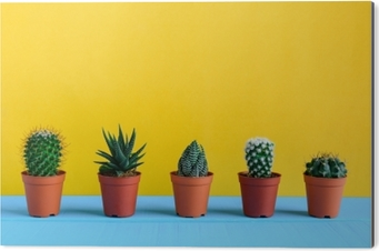 Bild auf Alu-Dibond Kaktus auf dem Schreibtisch mit gelbem wal