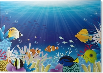 Bild auf Alu-Dibond Meer