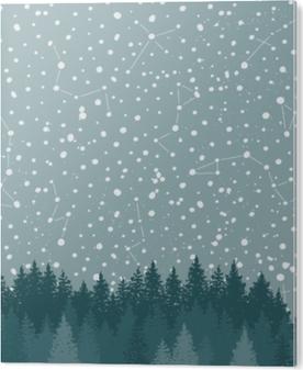 Bild auf PVC Wald und Nachthimmel mit Sternen Vektor Hintergrund. Raum Hintergrund.