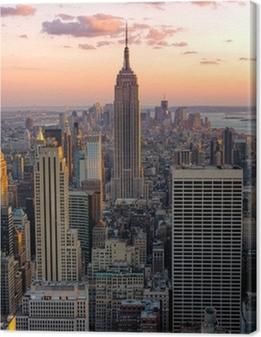 New York Empire State Building Billeder premium