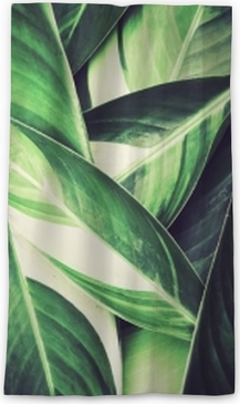 Fresh tropical Green leaves background Blackout Window Curtain