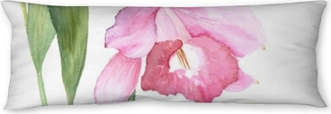 Botanical watercolor illustration sketch of pink cattleya flower on white background Body Pillow