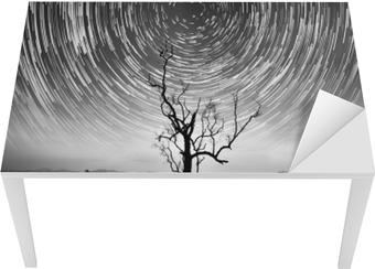 Alene træ og stjerne trail fotografering til dit interiør. Bord og skrivbordfiner