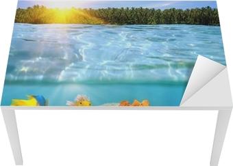 Solnedgang og farverigt undervands marine liv Bord og skrivbordfiner