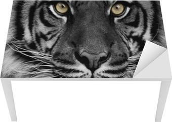 Bord- og skrivebordsklistremerke Tiger øyne
