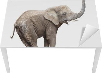 Bureau- en Tafelsticker Afrikaanse olifant (Loxodonta africana) balanceren op een blauwe bal.