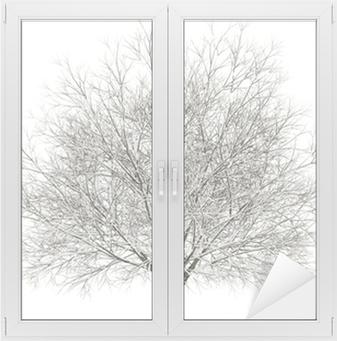 Cam ve Pencere Çıkartması Kış gürgen ağaç beyaz zemin üzerine izole