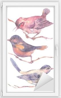 Cam ve Pencere Çıkartması Renkli suluboya Set kuşlar beyaz izole