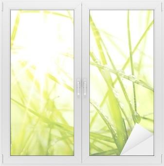Cam ve Pencere Çıkartması Yeşil yaz çimen ve güneş ışığı