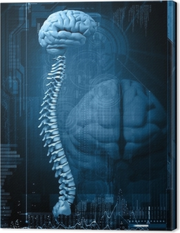 Canvas Abstract ontwerp met de hersenen en de wervelkolom