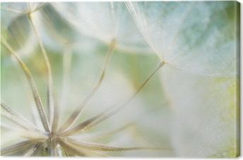 Canvas Abstracte paardebloem bloem detail achtergrond, close-up met zachte f
